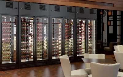 Vinotecas doble temperatura: perfectas para conservar varios tipos de vino